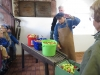 Besuch der alten Moste in Neusatz